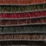 colori cocco